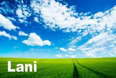 今日のハワイ語 | Laniラニ(空、天、高貴な)/ 'Ānelaアーネラ(天使)